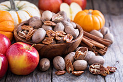 Fall harvest concept - nuts and pumpkins Stock Images