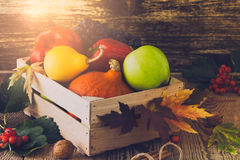 Fall harvest decorating. Still life of winter squash and vegetables. In a wooden box stock image