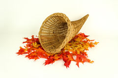 Fall Harvest and empty cornucopia Royalty Free Stock Image
