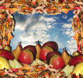 Fall harvest frame. Fall leaves with fruits on sky background fall harvest frame stock photos