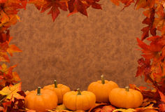 Fall Harvest Frame Stock Image