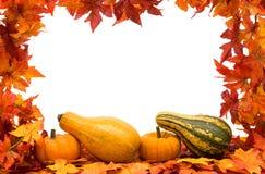 Fall Harvest Frame Stock Image