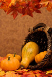 Fall Harvest Frame Royalty Free Stock Images