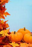 Fall Harvest Frame Royalty Free Stock Image