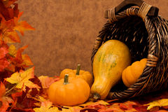 Fall Harvest Frame Stock Photography