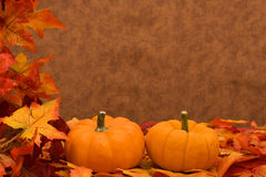 Free Fall Harvest Frame Stock Images - 6549564