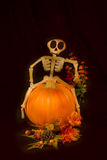 Fall Harvest Halloween Skeleton and Pumpkin. Fall Harvest Halloween with Smiling Skeleton and Pumpkin on a black background Stock Photos
