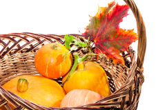 Fall harvest: pumpkin and autumn leaves in the basket isolated o Royalty Free Stock Photos