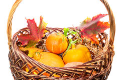 Fall harvest: pumpkin and autumn leaves in the basket isolated o Royalty Free Stock Images
