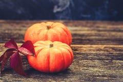Fall harvest of pumpkins Royalty Free Stock Photos