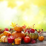 Fall harvest of pumpkins. With leaves and candles on wooden table, copy space on fall garden background stock photos