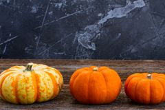 Fall harvest of pumpkins. Row of fall harvest of pumpkins on wooden table Stock Photos