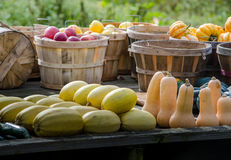 Fall harvest for sale Royalty Free Stock Image