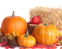 Fall harvest scene isolated on white background Stock Photo