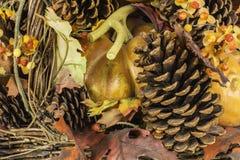 Fall Harvest Scene Stock Image