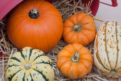 Fall Harvest in straw Royalty Free Stock Image