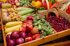 Fall harvest vegetables. Large group of fall harvest vegetables including corn and apples Royalty Free Stock Photos