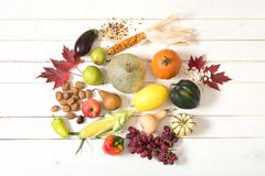 Fall Harvest of Vegetables, Fruits, Nuts, Seeds Fresh Picked from a Farm Garden and displayed on white board background with room. Above shot photo of Fall Stock Photo