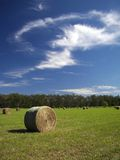 Fall Hay Color 1. Bales of Hay in a Field Under an Open Sky stock photography