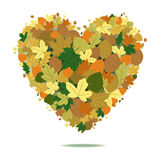 Fall Heart. Dry autumn leaves forming a heart Stock Photos