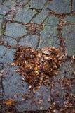 Fall heart Royalty Free Stock Image