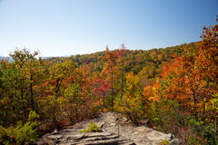Fall on High Rock Royalty Free Stock Image