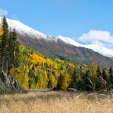 Fall Highside along Sterling Highway. Reds and golds cover the hillside along the Sterling Highway on Alaska's Kenai Pennisula Stock Photography