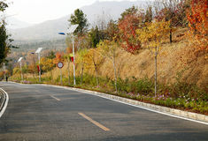 Fall highway royalty free stock images