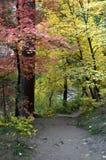 Fall Hike Stock Image