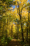 Fall Hiking Royalty Free Stock Photography