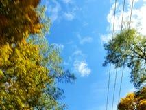 Fall-Himmel stockfotografie