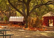 Fall Holiday Scene Stock Photography
