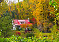 Fall Home royalty free stock image