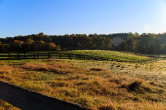 Fall horse farm in Northern Virginia. Morning sun on a horse farm in Northern Virginia, with trees, pasture, grass and fencing Royalty Free Stock Photography