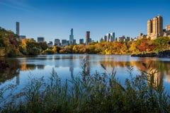 Fall i Central Park med Manhattan skyskrapor, New York City royaltyfri fotografi