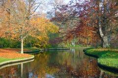 Fall i en Park Royaltyfria Bilder