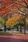 Fall in Illinois. Sunny fall in small US town Stock Photo