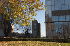 Fall impression and textures of mirroring city Royalty Free Stock Photo