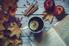 Free Fall In Home Hot Autumn Tea With Lemon Royalty Free Stock Photos - 101609668