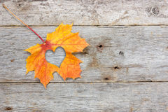 Fall In Love Photo Metaphor Stock Photography