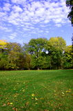 Fall In The Park With Green Trees Under Blue Sky Stock Photos