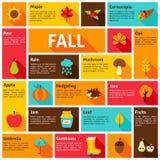 Fall Infographic Concept Stock Photos