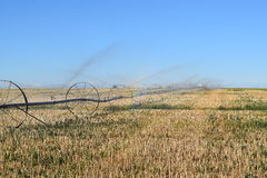 Fall Irrigation Stock Images