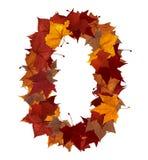 fall isolerad leaf nummer nolla Arkivbilder