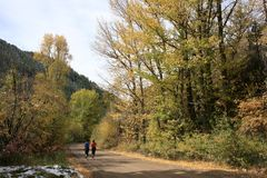Fall joggers in mountain canyon. Lady joggers along a mountain road on a late fall day in the Rockies Royalty Free Stock Photography
