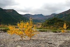 Fall in Kamchatka Stock Photo