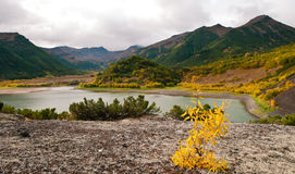 Fall in Kamchatka Stock Image