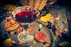 Fall kitchen cup tincture chokeberry wooden table Stock Images