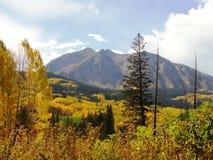 Fall in Kolorado Lizenzfreies Stockfoto