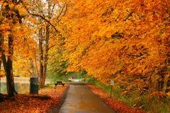 Fall at the lake Royalty Free Stock Image